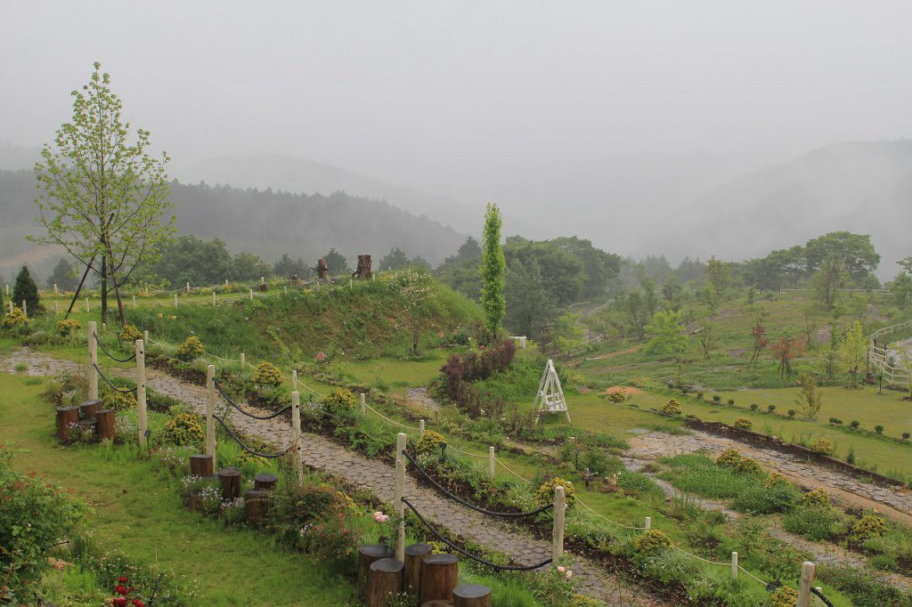 本日、朝より集中豪雨のため臨時休業させていただきます。
